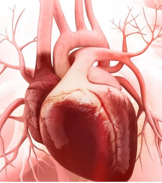 kardiosklerozun səbəbləri