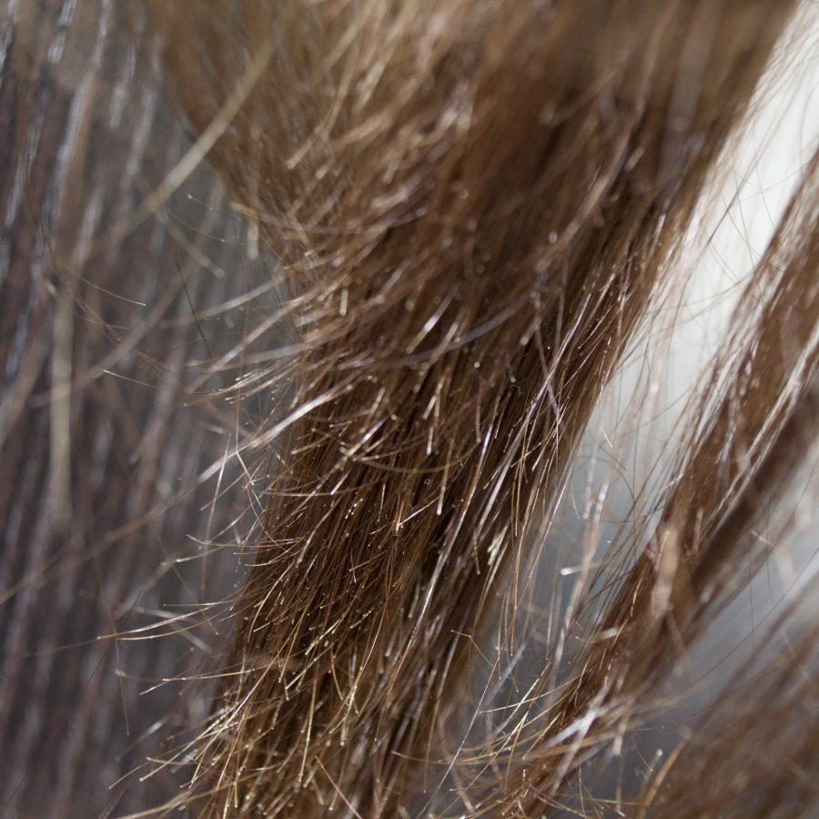 haçalanan saçlar (saçqıran) ilə mübarizə