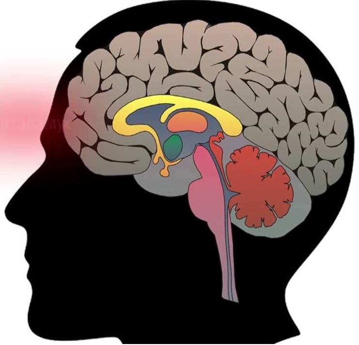 Persistə edən qalaktoreya-amenoreya sindromunun səbəbləri