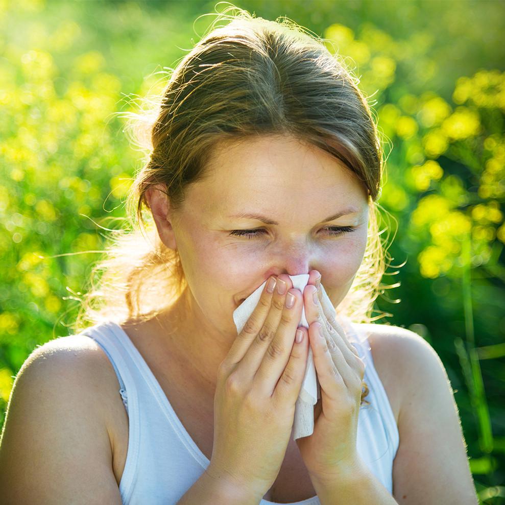 allergik rinit nədir?