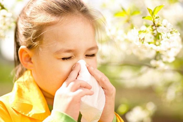 allergik rinosinusopatiya