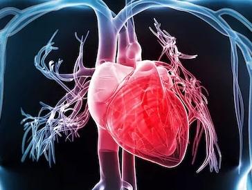 kardiomiopatiya nədir?