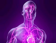 Neyrosirkulyator distoniya nədir?