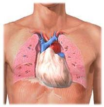 postinfarkt sindrom nədir?