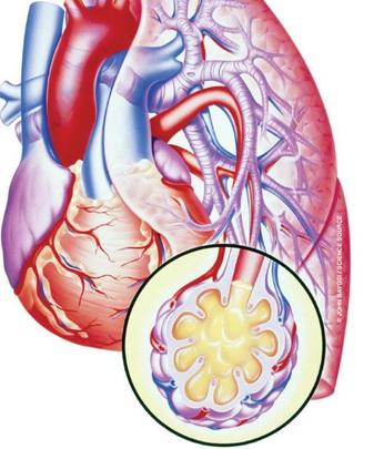 ürək astması nədir?