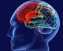 Qıcıqlanmış bağırsaq sindromunun səbəbləri